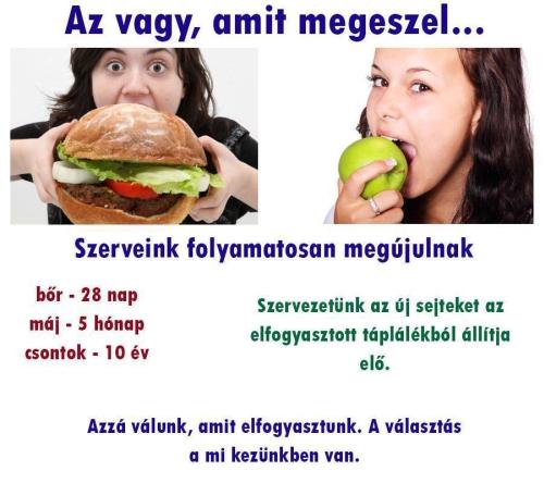 gyógyító ételek