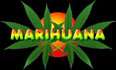 vadkender, marihuana