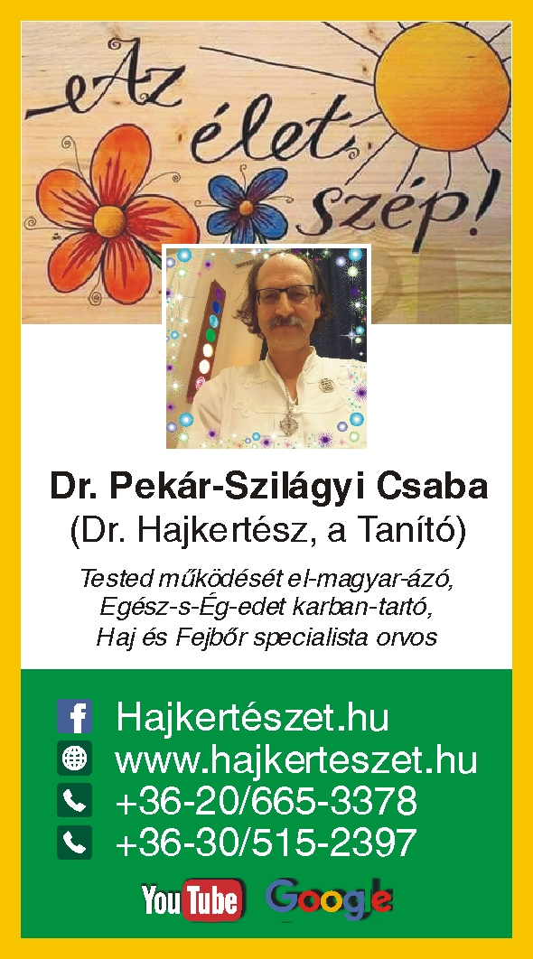 Hajkerteszet Pekár Szilágyi Csaba