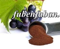 A szőlőmag olaj egészségre gyakorolt jótékony hatása